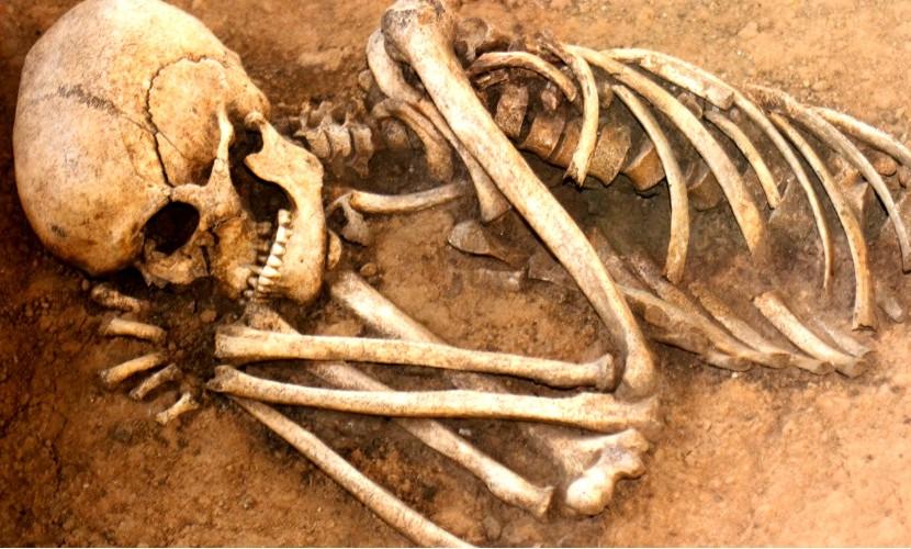 Человеческие скелеты обнаружены во дворце президента Афганистана