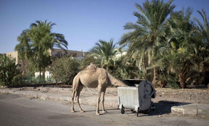 Шарм-эль-Шейх превратился в город-призрак, - туристы