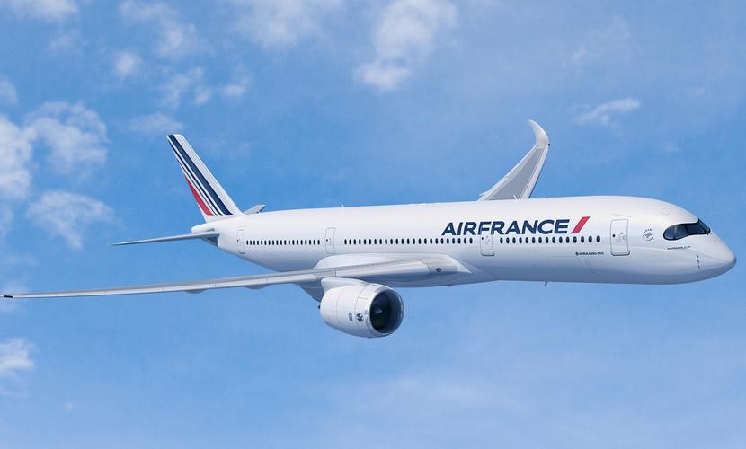 Пассажирские лайнеры из-за угрозы взрыва направили вместо Франции в США