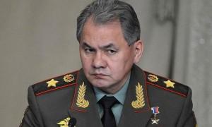 Шойгу увидел войска НАТО на границах России