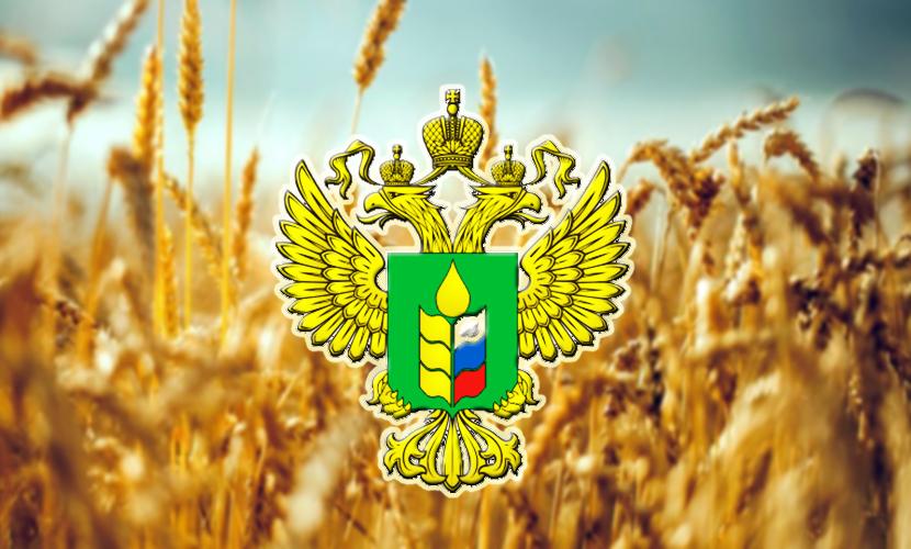Дипломатия агроэкспорта: сельхоз-атташе России за рубежом
