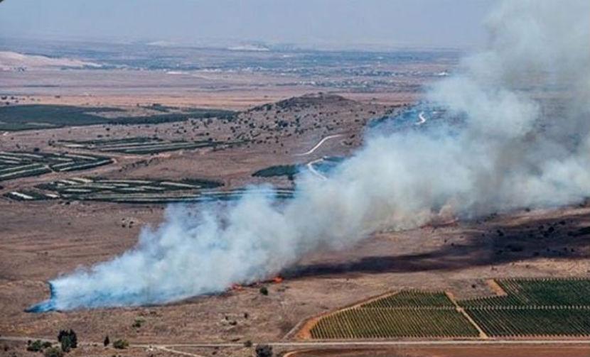 Госдума обвинила Турцию в пособничестве боевикам ИГИЛ