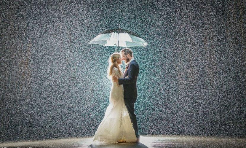 Идеальная свадебная фотография поразила Интернет