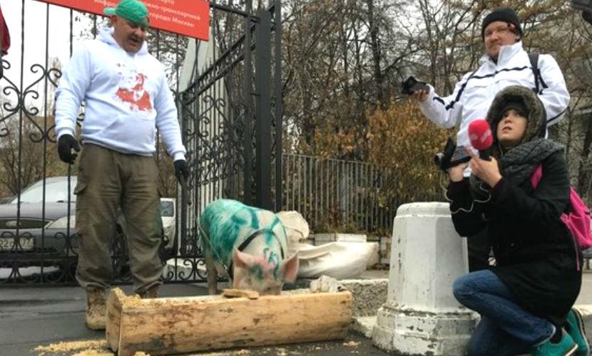 Скандальный паркмен явился к Дептрансу со свиньей, названной в честь Ликсутова