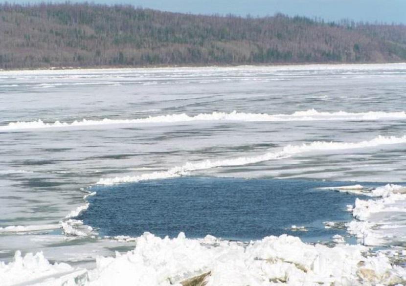 Из ледяного плена реки Савала в Воронежской области смогли выбраться мать и сын