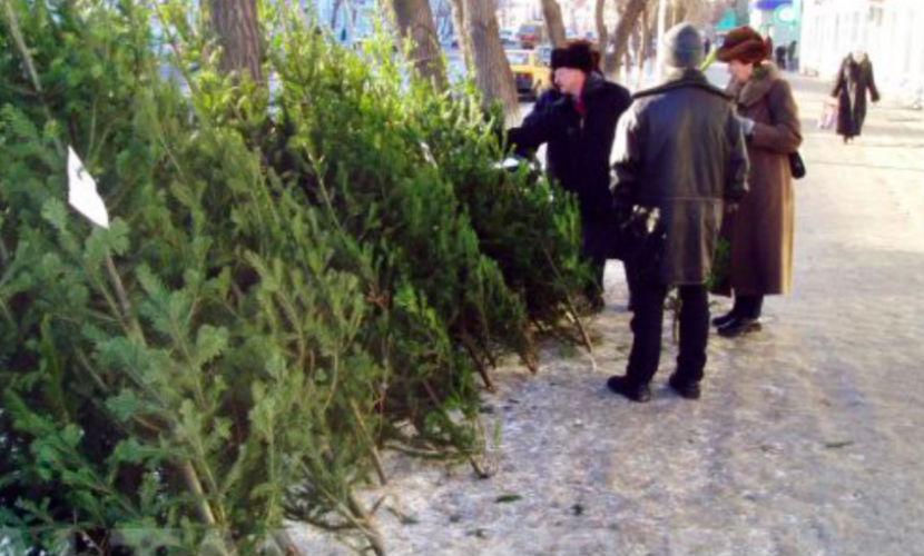 Продавец елок предлагал покупателям пулемет за 2 тысячи гривен в Киеве