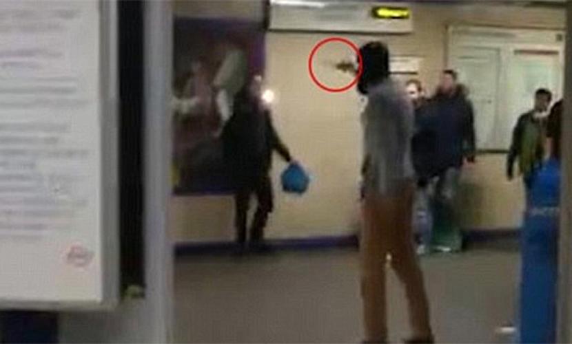 Мужчина из мести за Сирию перерезал горло пассажиру метро в Лондоне