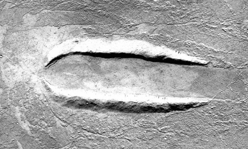 Следы посадки летающей тарелки обнаружили на Марсе