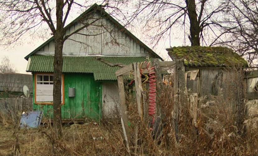 В этом доме вместе с 40 собаками жил 10-летний сын заводчицы