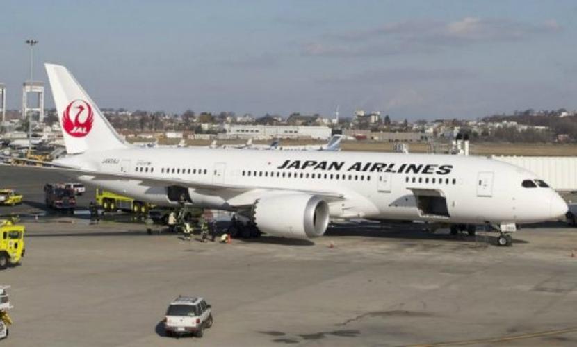 Молния ударила в пассажирский самолет над Японией