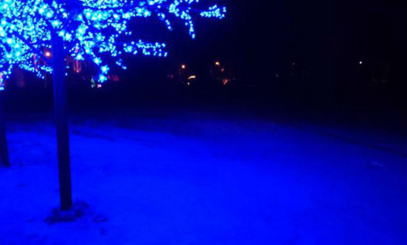 снег в гусеве
