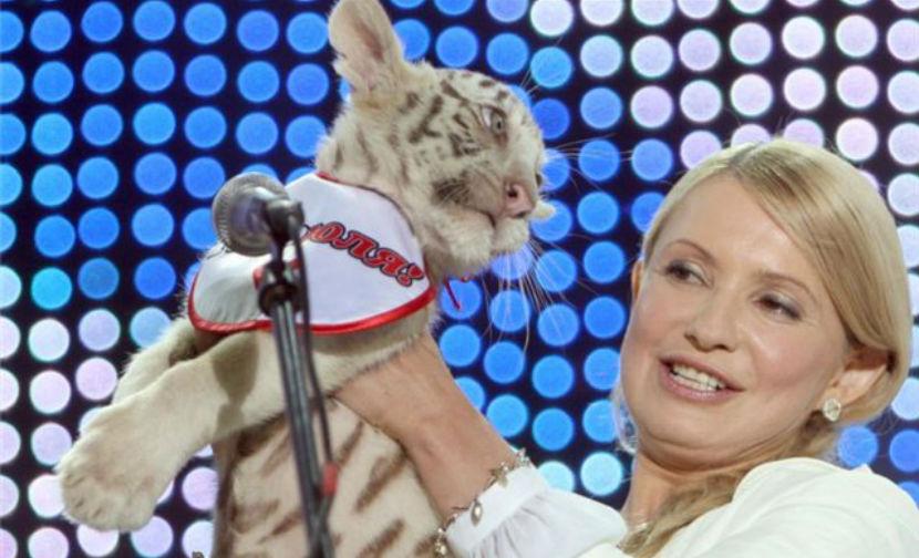 Детеныш тигрицы Юлии Тимошенко погиб от холода