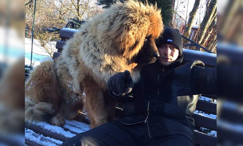 Оппозиционеры начали меряться с чеченскими политиками псами и кошками