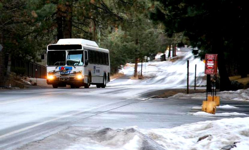 Посольство РФ в Польше назвало причины загадочной смерти россиянок в автобусе