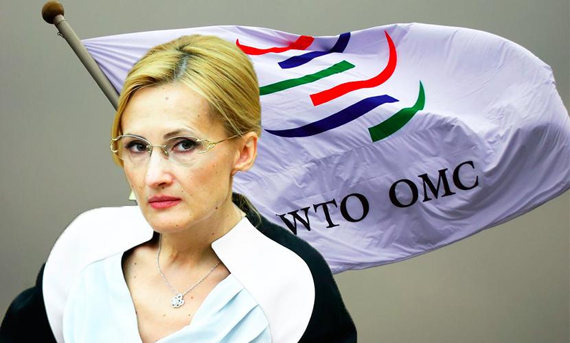 Яровая о жалобе Турции в ВТО: