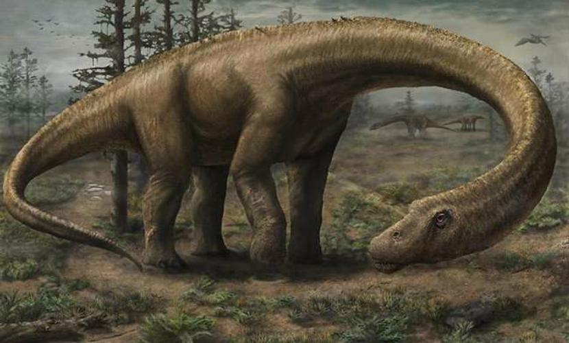 Ученые обнаружили останкисамого большого в истории сухопутного динозавра