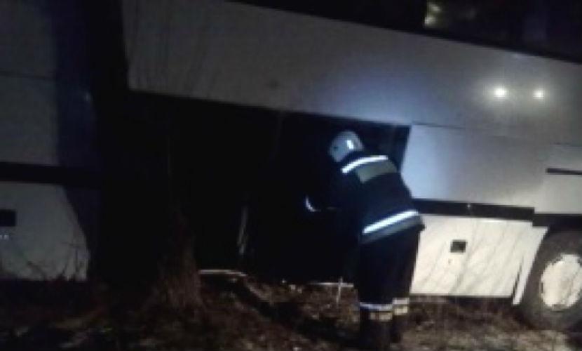 Пассажирский автобус слетел в кювет под Воронежем, 12 человек пострадали