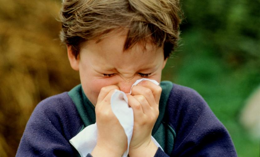 Шестеро детей от 3 до 13 лет заболели свиным гриппом в Бурятии