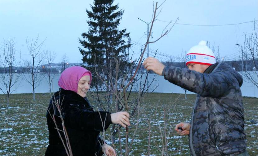 Глава Чечни призвал каждую семью посадить по дереву
