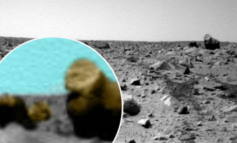 Горилла и верблюд поселились на Марсе, - уфологи
