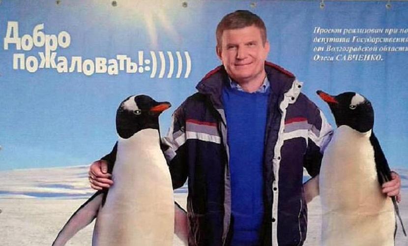 Пропавший в Антарктиде депутат начал избирательную кампанию в обнимку с пингвинами