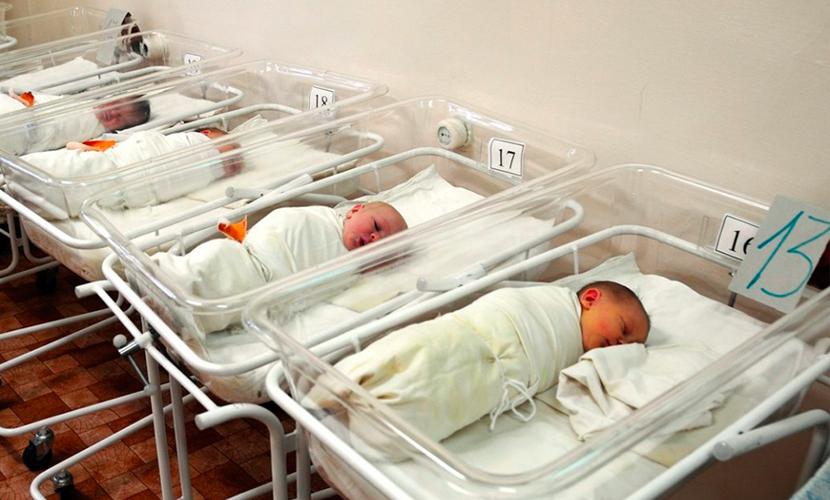 Умершие в перинатальном центре Орла восемь младенцев не страдали общей болезнью