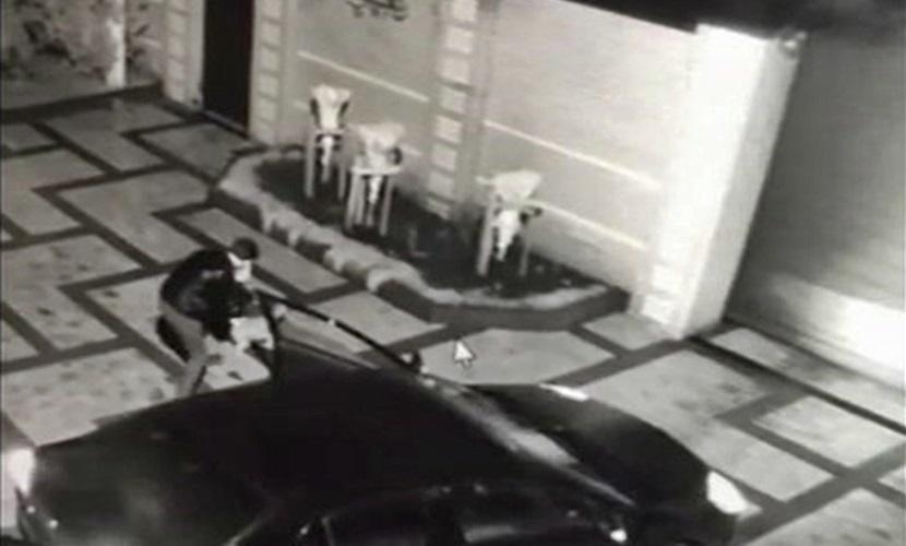 Дерзкое похищение кота кубанским таксистом попало на видеокамеры