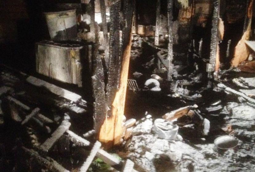 В сгоревшем приюте для собак погибли питомцы