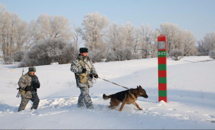 Российские пограничники поймали украинского военного в Ростовской области
