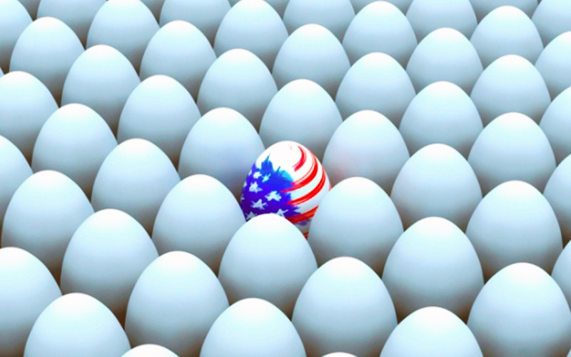 На США подали в суд за вредные яйца
