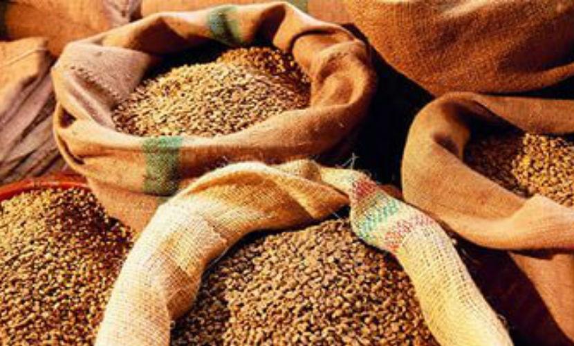 Россия стала крупным экспортером пшеницы в мире, вытеснив США