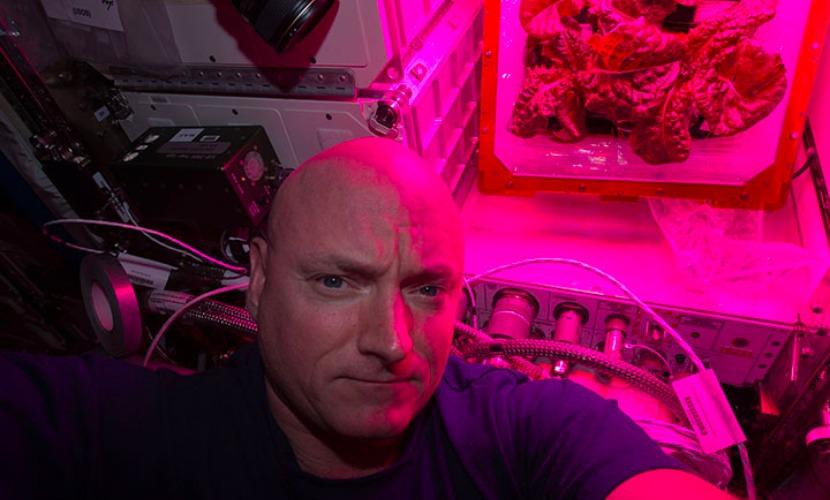 """Скотт Келли на """"космической ферме"""" МКС."""