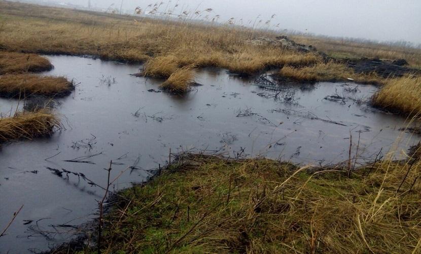 Разлив нефти под Анапой могли спровоцировать местные жители
