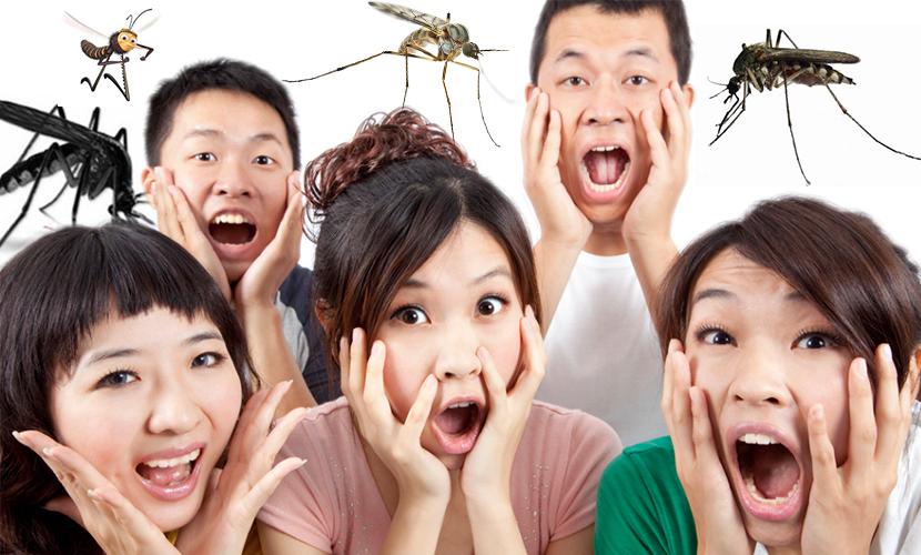 Китайцы перебьют всех комаров для защиты от лихорадки Зика