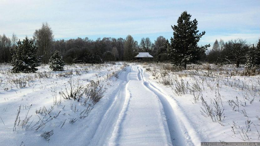 Мать с четырьмя детьми пять часов освобождали из снежного плена на дороге