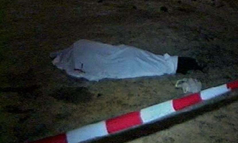 27-летнюю девушку-риелтора нашли задушенной в лесу под Петербургом