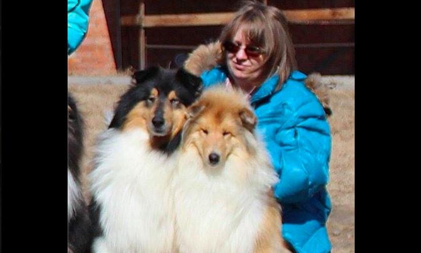 Известная иркутская заводчица превратила чужой коттедж в приют для животных