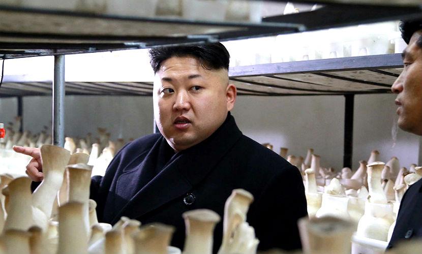 Ким Чен Ын приказал испытывать больше ядерного оружия