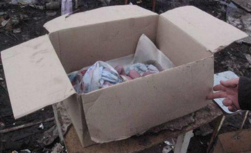 Труп новорожденного обнаружен в обувной коробке на западе столицы