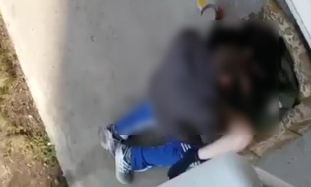 Секс пьяной девушки с псом видео
