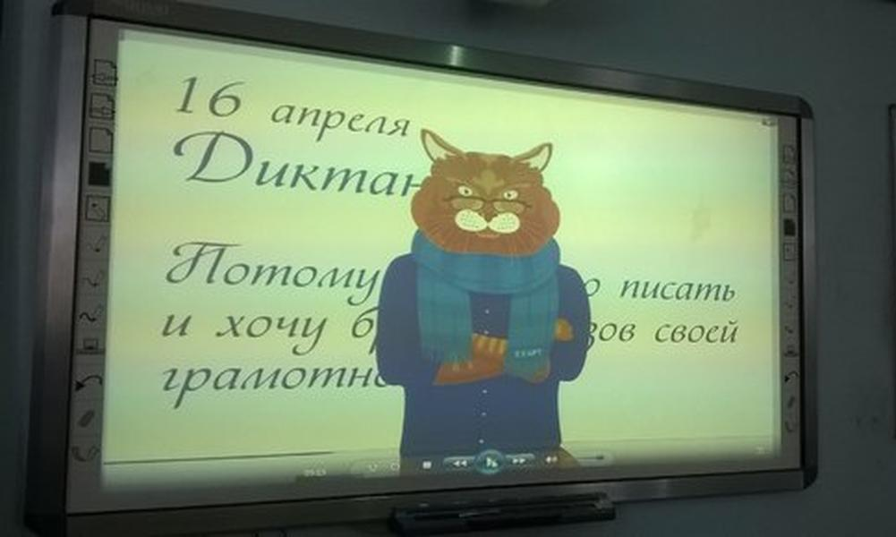 Сбой Кота Ученого, царь от Жириновского и запятые от «Comedy баттл»: курьезы «Тотального диктанта»