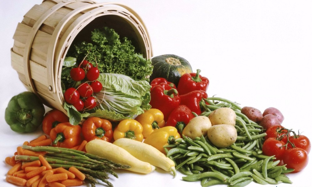Подсчитана стоимость выброшенной в России еды