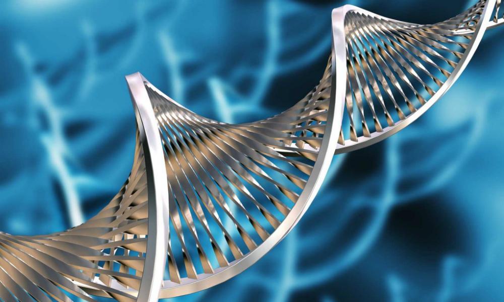Шведские ученые нашли ген инсульта