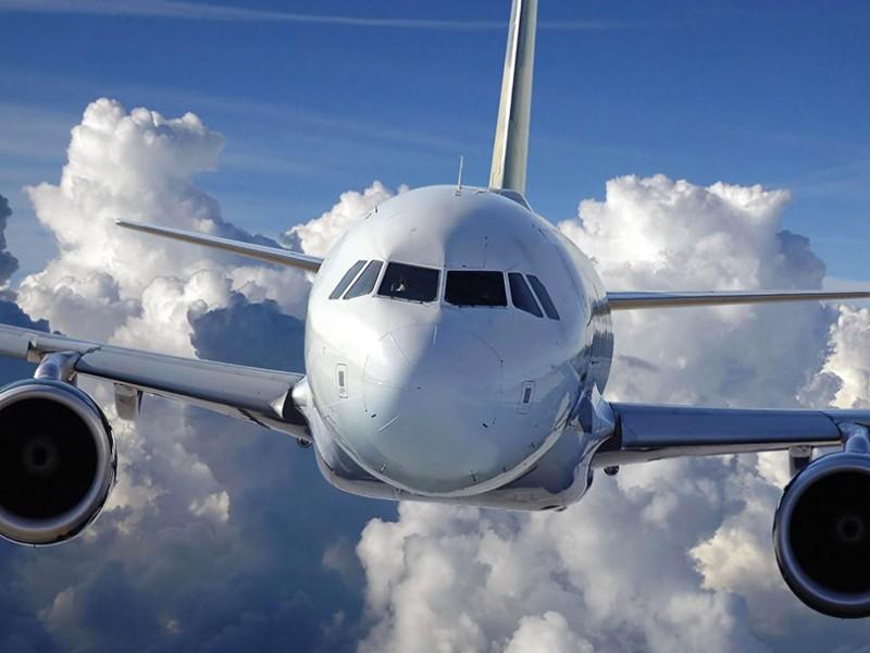 Летевший в США самолет экстренно сел в Домодедово из-за ребенка, впавшего в кому