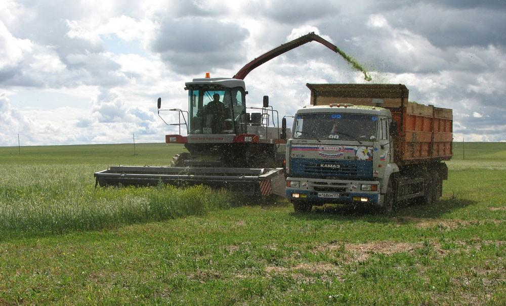Сельхозпредприятию «Романовское» удалось отстоять право на аренду земельного участка