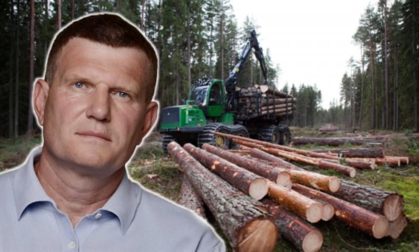 Депутат Госдумы потребовал отправить на лесоповал фальсификаторов праймериз