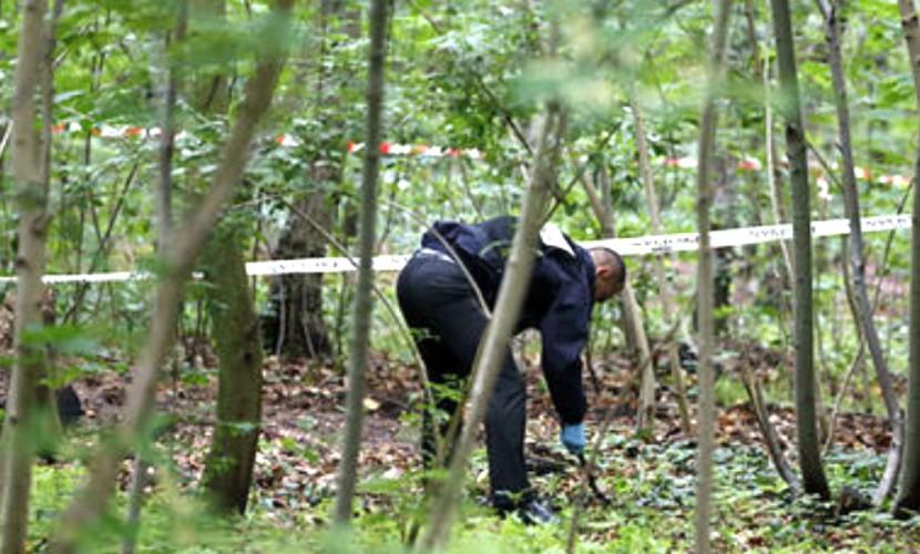 Парень убил 13-летнюю школьницу на прогулке в лесу под Архангельском