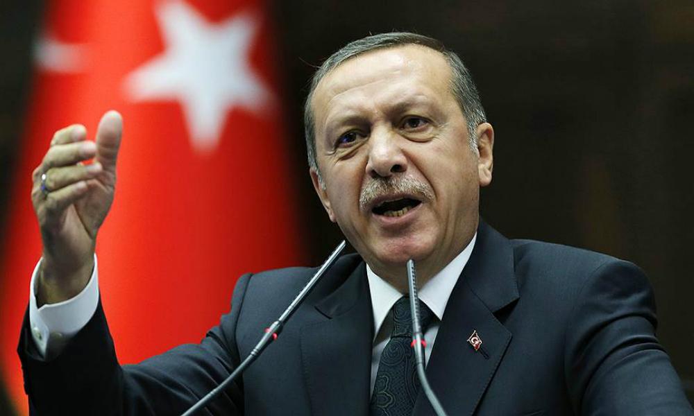 Немецкий суд разрешил называть Эрдогана «трусливым дураком»