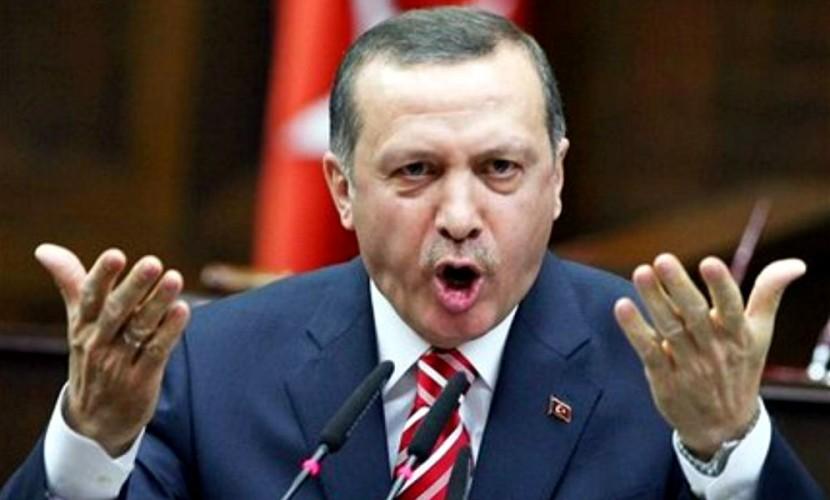 Эрдоган обвинил Запад в заботе о секс-меньшинствах и китах вместо помощи сирийцам