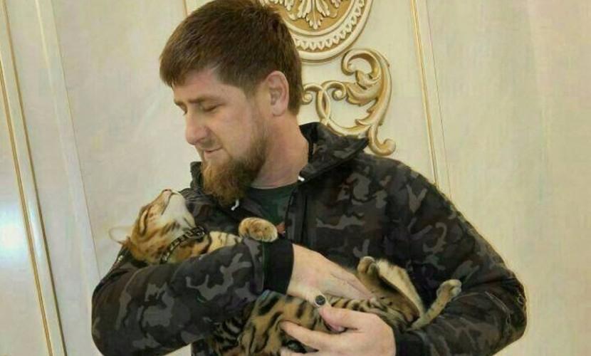 Кадыров с горечью сообщил в социальной сети о пропаже любимого